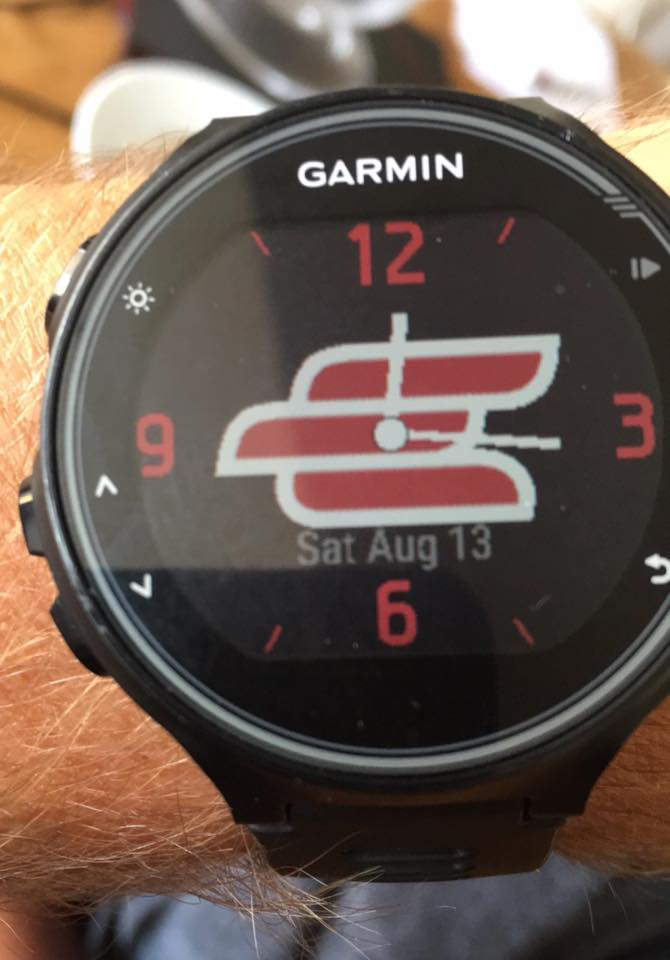 Evo Garmin Face